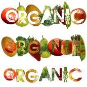 Organic1-2